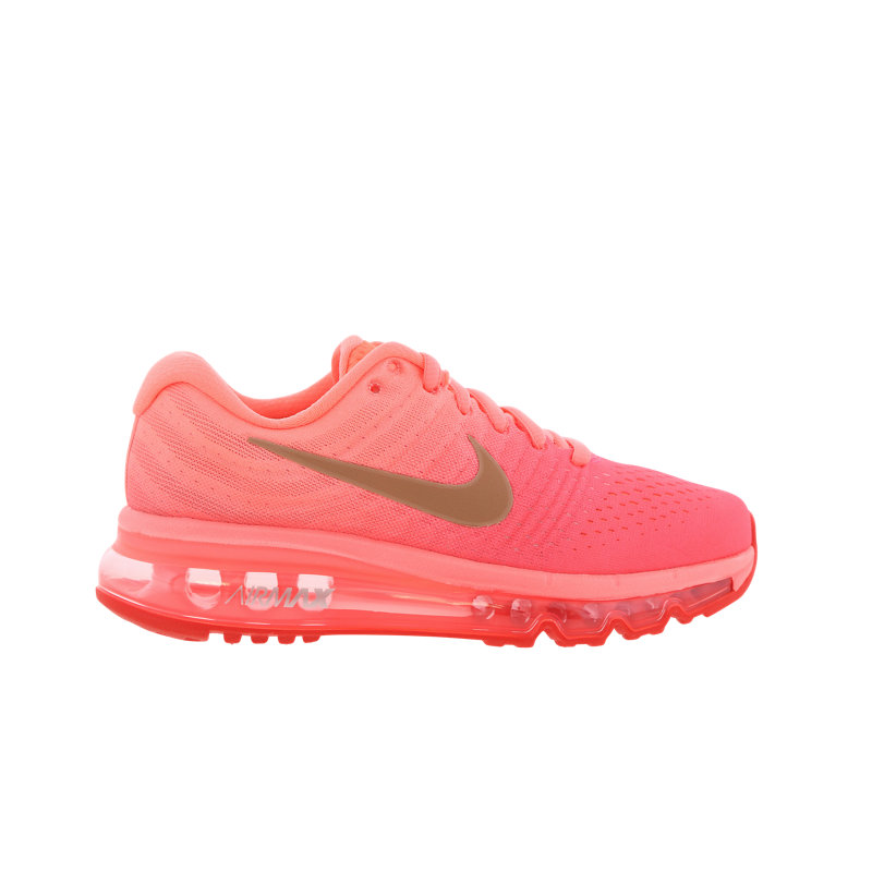 best sneakers d7401 d8911 Nike Air Max 2017 - Grade School Shoes Image